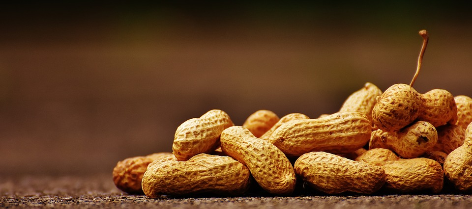 arašídy ve slupce